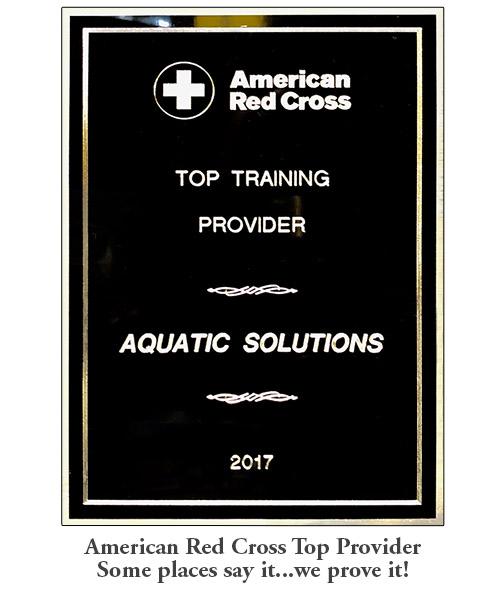 Lifeguarding Review Classes New York